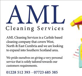 AML Cleaning Services