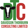 Davidson Thorburn Consulting Limited